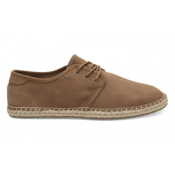 TOMS Diego Toffee Suede